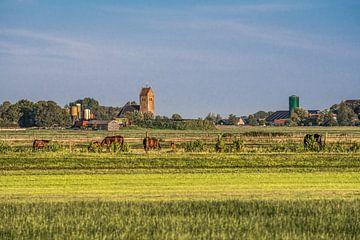 Het Friese landschap gekleurd door een zomeravondzon sur Harrie Muis