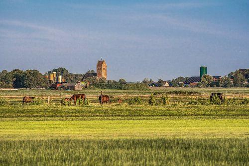 Het Friese landschap gekleurd door een zomeravondzon van Harrie Muis