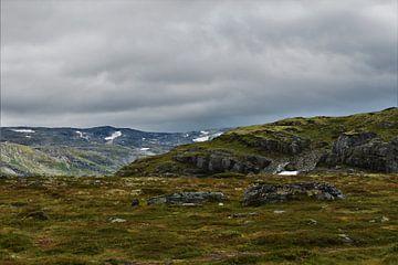 Bovenop de Noorse gebergte van Naomi Elshoff