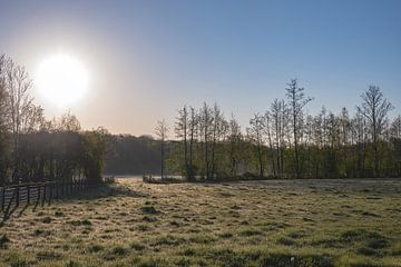 koude lenteochtend van Tania Perneel
