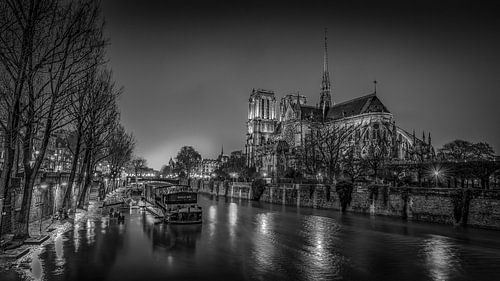 Notre Dame van Robbert Ladan