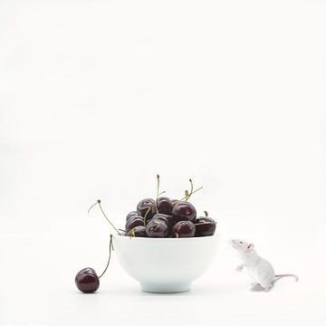 Cherry passion . Stilleven met humor en kersen van Saskia Dingemans
