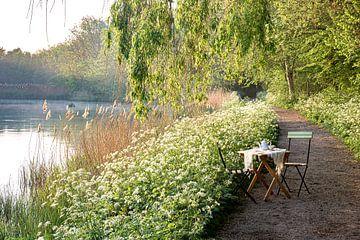 Garden Chair traveling in Zeeland IV van Irene van de Wege
