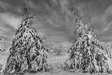 Winter im Erzgebirge von Johnny Flash