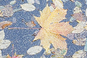 Buntes Ahornblatt im Herbst, Abstrakt