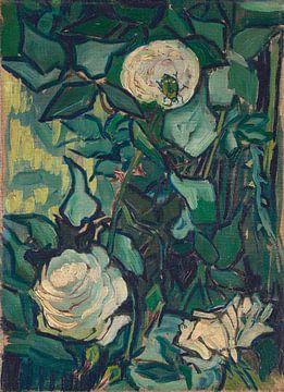Rosen und Käfer, Vincent van Gogh
