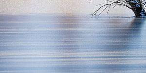 schaduwen op ijs van Hetwie van der Putten