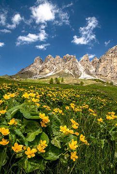 Lente in de Dolomieten van Achim Thomae
