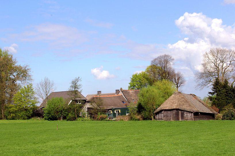 Zomer in de Eempolder, Soest van Inge Hogenbijl