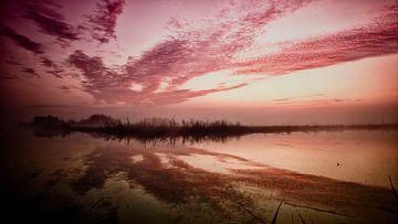 een landschap gevangen in mist op het monent dat de zon op komt van Studio de Waay