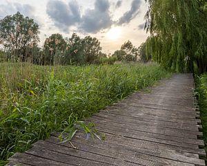 het Serge Berten pad in Menen van Fotografie Krist / Top Foto Vlaanderen