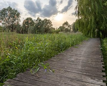 der Serge Berten Weg in Menin von Fotografie Krist / Top Foto Vlaanderen