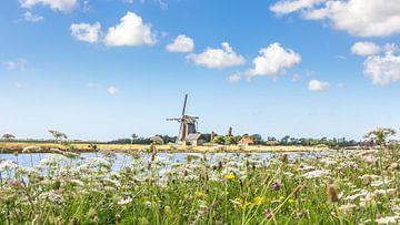 Molen op Texel Nederland van Hilda Weges