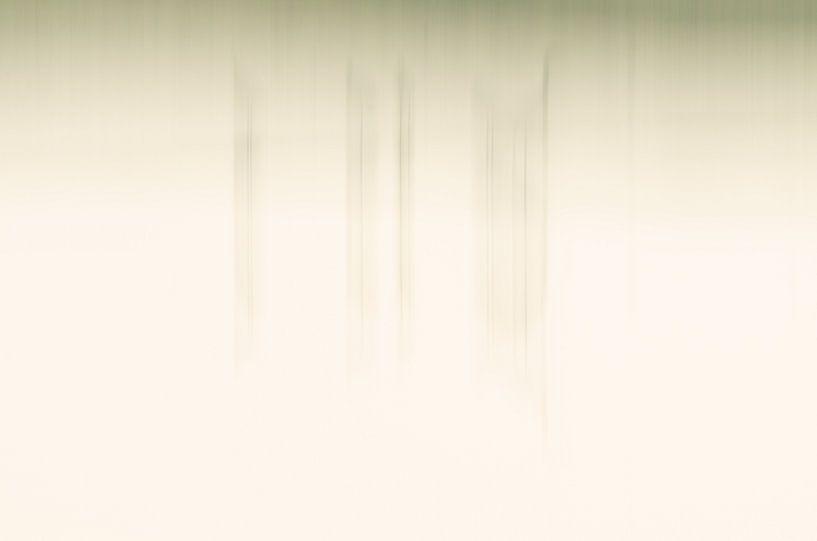 abstracte natuur van Hans Debruyne