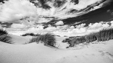 Die Dünenlandschaft mit Dünen und Strandhafer in Schwarz-Weiß von eric van der eijk