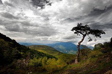 Französische Landschaft mit wolkigem Licht... von Wim Schuurmans