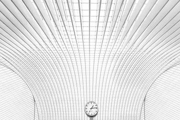 Timelines van Wil Crooymans