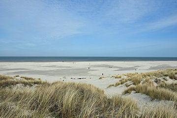 Het goudgele strand van Ameland van Tjamme Vis