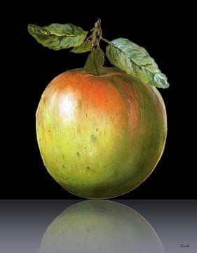 Apfel van Gertrud Scheffler