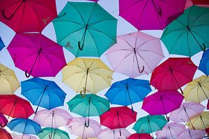 Kleurende paraplu's