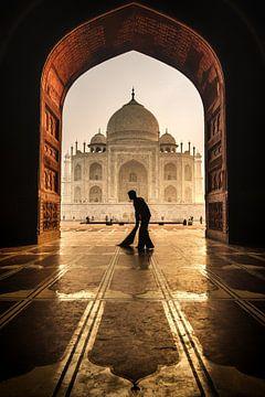 Taj Mahal schoner, Pavol Stranak (gezien bij vtwonen) van 1x