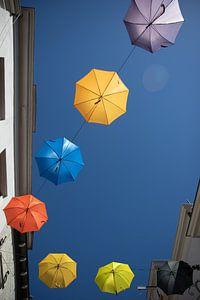 Parapluis Deventer. Kleurrijk.