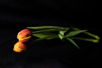 In eenvoud schuilt de schoonheid... van As Janson