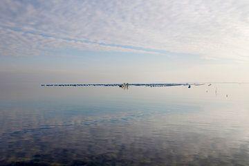 Spiegelend water bij de Brouwersdam sur Rene  den Engelsman