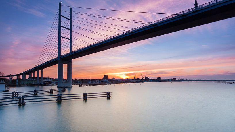 The Bridge van Tilo Grellmann