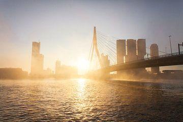Nebliger Morgen in Rotterdam von Gijs Koole