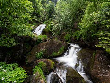 Bij de Triebergse waterval