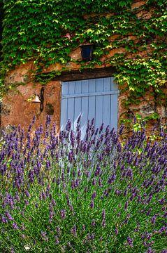 Lavendel, in Zuid Frankrijk van Annelies Martinot