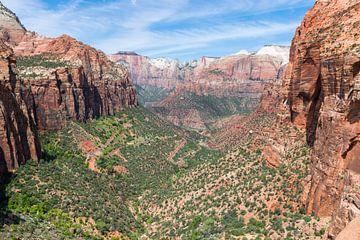 Canyon Overlook im Zion National Park in Amerika von Linda Schouw