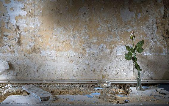Eternal life van Olivier Van Cauwelaert