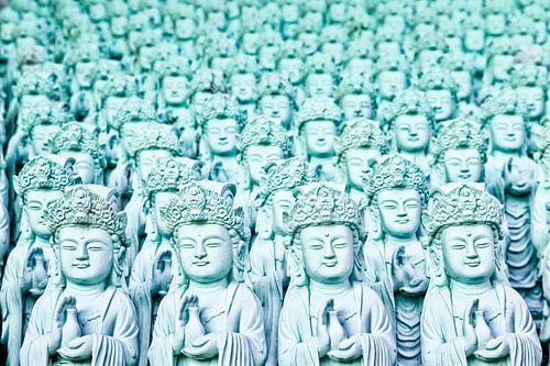 Vele Boeddha's.