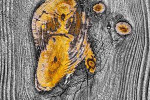 Verweerd hout in close-up van