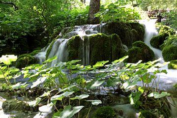 waterval in het Plitvice N.P. in Kroatië von Antwan Janssen