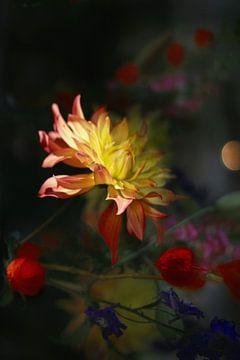 Herfst bloemen nacht (2) van Marianna Pobedimova
