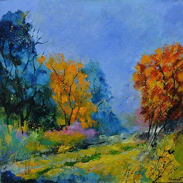 Herbstliche Farben von pol ledent