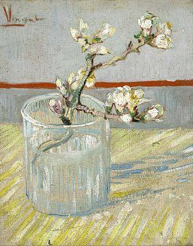 Blühender Mandelzweig in einem Glas - Vincent van Gogh