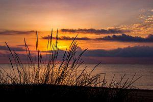 Zonsondergang aan de kust. van