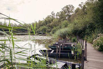 Visvijver met roeibootjes aan het water van Angela Kiemeneij