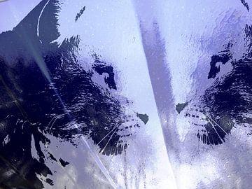 Kattenkunst - Odin 5 van MoArt (Maurice Heuts)
