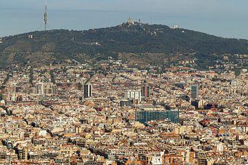 Barcelona-Übersicht von Anjella Buckens