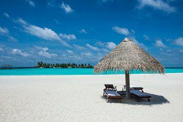 LPH 71161639 Parasol aan een wit strand met turquoise water, Malediven, Indische Oceaan van BeeldigBeeld Food & Lifestyle