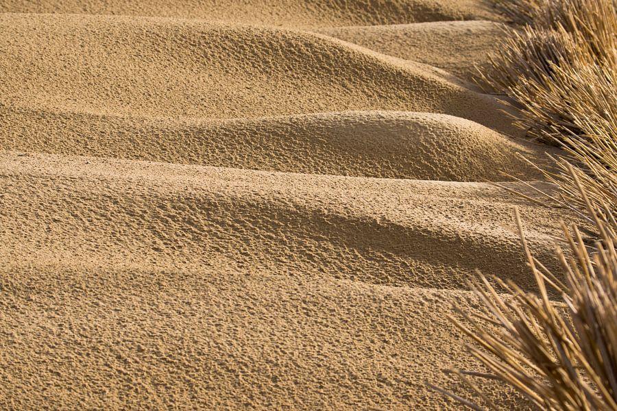 Beach 'Sand waves'