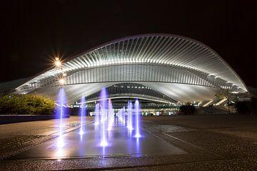 Station Guillemins bij nacht van Patrick de Vleeschauwer