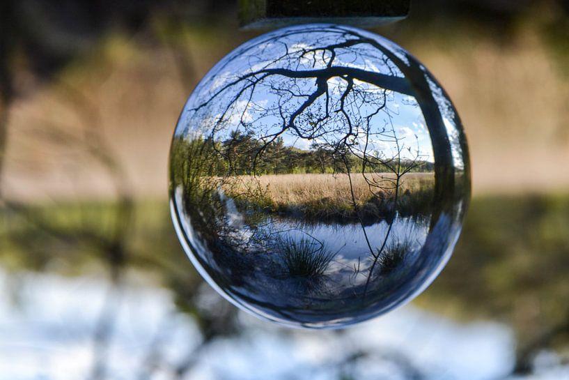 Landschap in glazen bol  van Angela Wouters