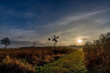 Lever de soleil dans une prairie avec du brouillard et un vieux moulin à vent à Ossenzijl, Pays-Bas sur Dafne Vos