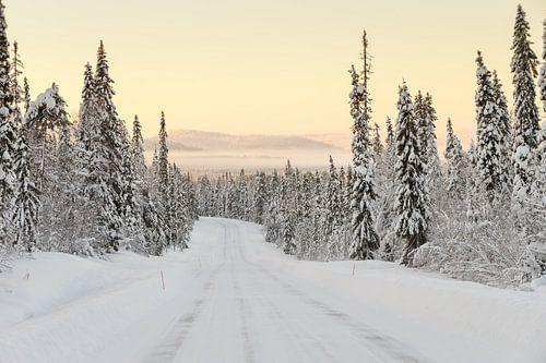 Winter landschap Finland van